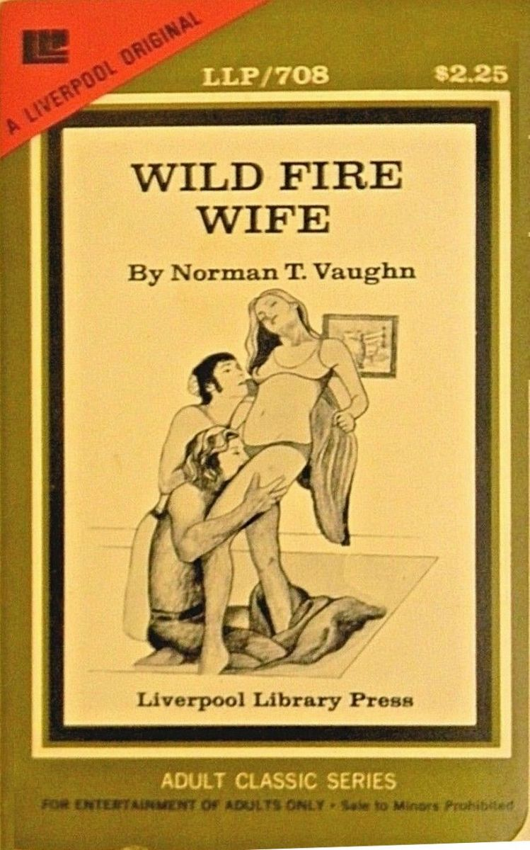Wild Fire Wife by Norman T Vaughn - Ebook