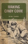 Making Cindy Come - SN-313 - Ebook