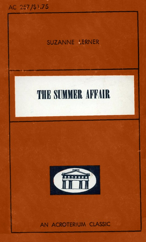 The Summer Affair by Suzanne Lerner - Ebook