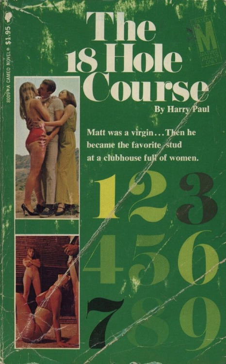 The 18 Hole Course by Harry Paul - Ebook