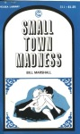 Small Town Madness by Bill Marshall - Ebook