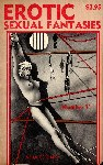 Erotic Sexual Fantasies - Number 11 - Ebook